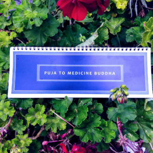 Sacred Text - Contemporary Puja to Medicine Buddha