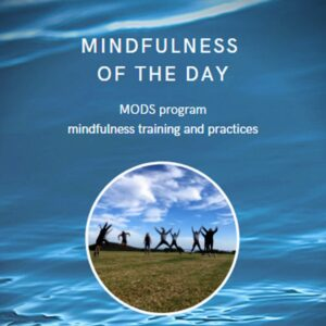 Mindfulness of the day training program