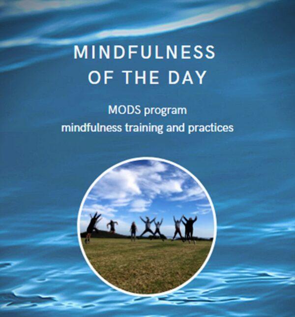 Mindfulness of the day training program
