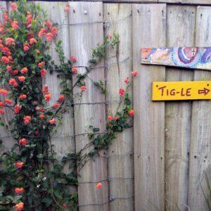 tigle entry 1